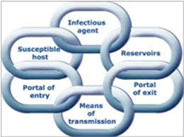 Fig. 1: The chain of infection model.